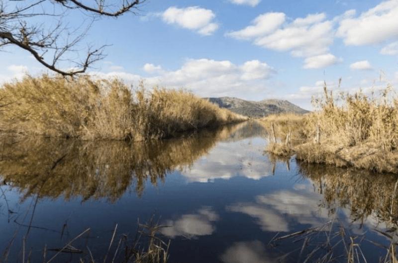 Natural Reservation, Mallorca, S'Albufera